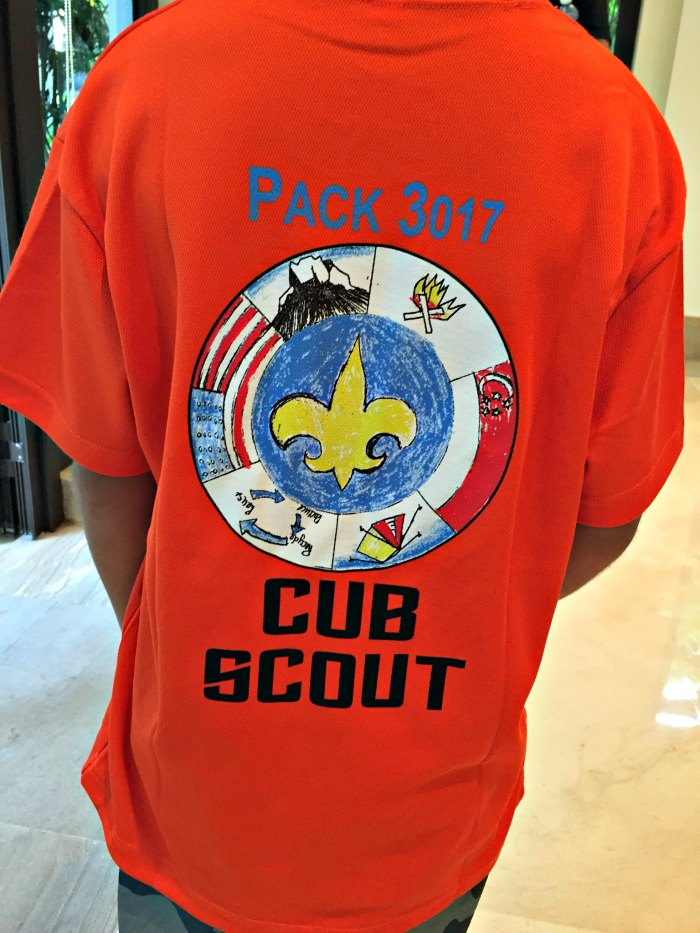 Cub Scouts of America Singapore 4