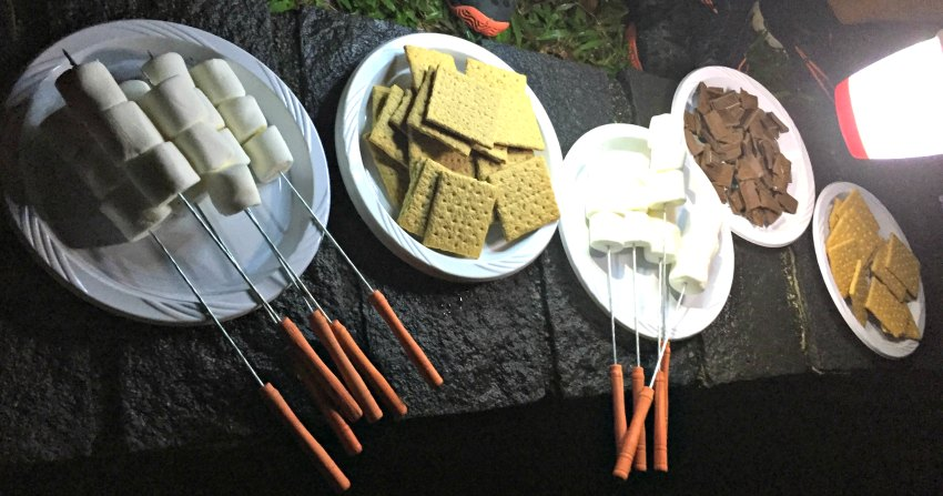 Smores Recipe Desserts Camping Kids Singapore
