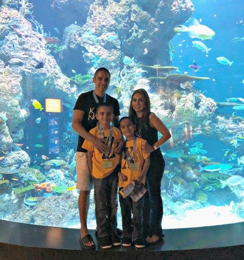 Ocean Dreams Sleepover Resorts World SEA Aquarium Hotel Suites Kids Activities Singapore