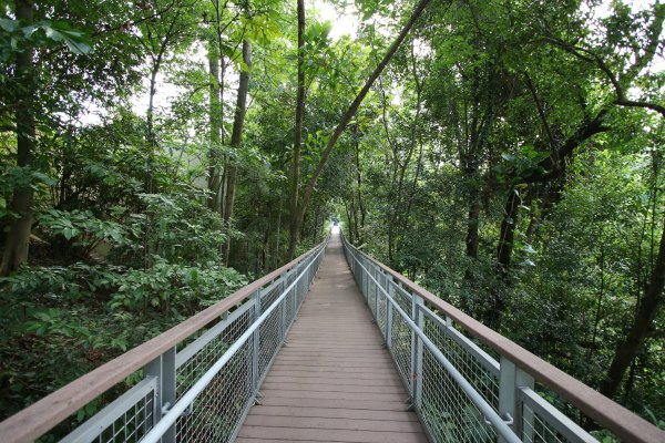 Sentosa Nature Trails Things to do with kids family singapore hiking outdoor picnic