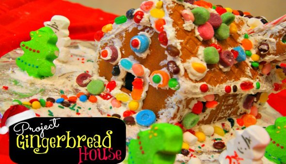 Project Gingerbread House