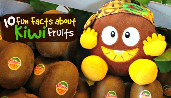 "10 Fun Facts About the ""Kiwifruit"""