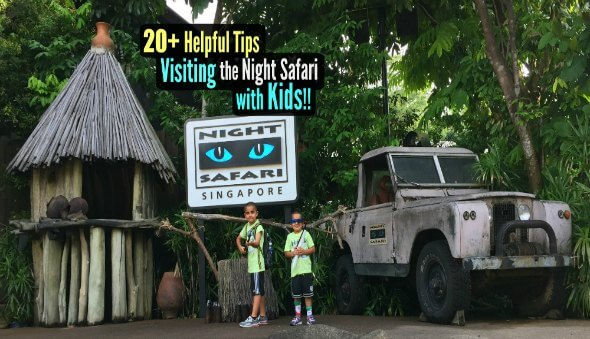 20+ Tips for Visiting the Singapore Night Safari with Kids